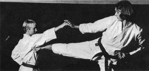 Доннер-Грау и Абеляр, 1973.